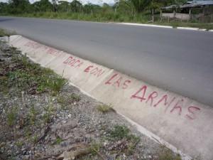Pintas llamaban a defender con las armas los cultivos de coca ilegal