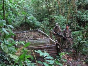 Ya son 34 laboratorios rústicos encontrados entre los cocales ilegales