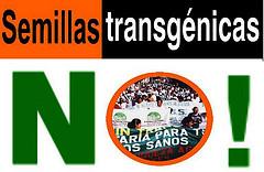 Piden al Congreso ley que declare al país libre de transgénicos